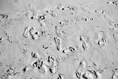 Footprints in sand Royalty Free Stock Photos