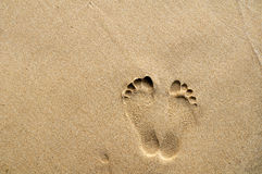 Footprints on sand background Stock Photography