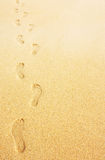 Footprints in the sand background Royalty Free Stock Photos