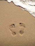 Footprints on sand beach Stock Images