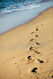 Footprints on sand beach Stock Photography