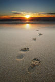 Footprints in sand at beach. During sunset Royalty Free Stock Image