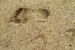 Footprints in the sand. stock images