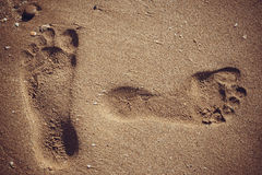 Footprints in the sand. Beach, footprints in the sand Stock Photos