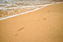 Footprints in the sand Royalty Free Stock Image