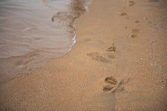 Footprints on the sand beach. Background Stock Photos