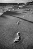 Footprints in sand beach black and white Royalty Free Stock Image