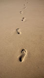 Footprints in the sand. Footprints in the beach sand, direction walking away. Photo taken on: October 6th, 2014 Stock Images