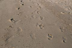 Footprints in the sand on the beach. royalty free stock photography