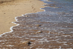 The footprints on the sand beach near to sea. Royalty Free Stock Photography
