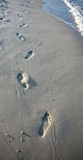 Footprints in sand at beach Stock Images