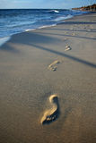 Footprints in sand beach Royalty Free Stock Image