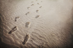Footprints in the sand at beach Royalty Free Stock Photography