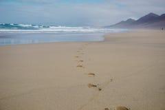 Footprints in sand on beautiful Cofete beach, Fuerteventura, Canary Islands, Spain Stock Photos