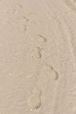 Footprints in the sand at the Blacl Sea shore. Beach travel conc Stock Image