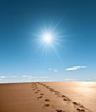 Sandy footprints. Footprints in the sand with bright sunshine Stock Photos