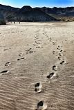 Footprints in the sand in Cabo de Gata, Almeria stock photos
