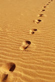 Footprints on sand. In the desert Royalty Free Stock Photo