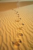 Footprints on the sand. In the desert Royalty Free Stock Image