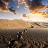 Footprints on sand in the desert Stock Images