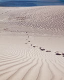 Footprints in a sand dune Royalty Free Stock Photo