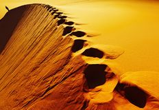 Footprints on sand dune Stock Photos