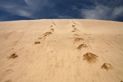 Footprints in sand dune Royalty Free Stock Images