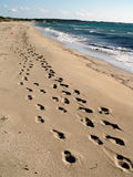 Footprints in a sand dune royalty free stock photography