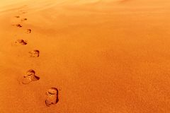 Footprints on sand dune Stock Images