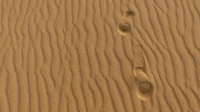 Footprints on sand dune, grains of sand, Corralejo, natural park. Fuerteventura. Royalty Free Stock Photos