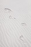 Footprints on the Sand Dunes stock photo