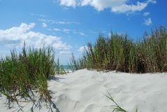 Footprints and sand dunes stock image