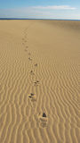 Footprints in sand Royalty Free Stock Photography