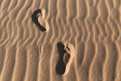 Footprints on a sand dunes desert Royalty Free Stock Images