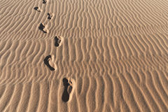 Footprints on a sand dunes desert Royalty Free Stock Image