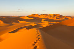 Footprints in the Sand Dunes - Sahara, Libya Royalty Free Stock Photo