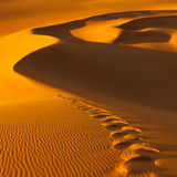 Footprints in the Sand Dunes - Sahara, Libya. Footprints in the sand dunes at sunset - Murzuq Desert, Sahara, Libya royalty free stock images