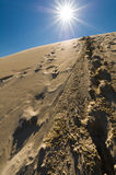 Footprints in sand dunes, Sahara, Morocco. Royalty Free Stock Image
