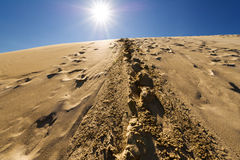Footprints in sand dunes, Sahara, Morocco. Royalty Free Stock Images