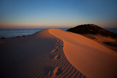 Footprints on the sand dunes on a sunset in a desert Royalty Free Stock Photos