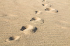 Footprints in the sand, Fuerteventura Royalty Free Stock Photos
