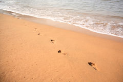 Footprints in the sand Goa Stock Image