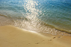 Footprints in sand on golden tropical beach Stock Images