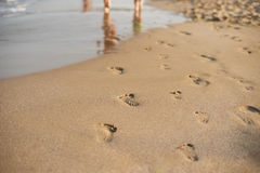 Footprints in the sand. Human footprints leading away from the viewer. A row of footprints in the sand on a beach in the summertim Stock Photos