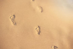 Footprints in the sand. Human footprints leading away from the viewer. A row of footprints in the sand on a beach in the summertim Royalty Free Stock Photo