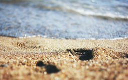 Footprints in the sand leading to the sea Stock Image