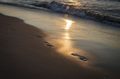 Footprints. In the sand, in the light of the setting sun Stock Photo