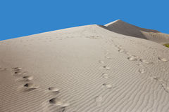 Footprints in the sand. Royalty Free Stock Image