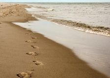 Footprints on the sand. Northern coast of Poland Stock Images