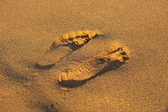 Footprints on sand Stock Photography